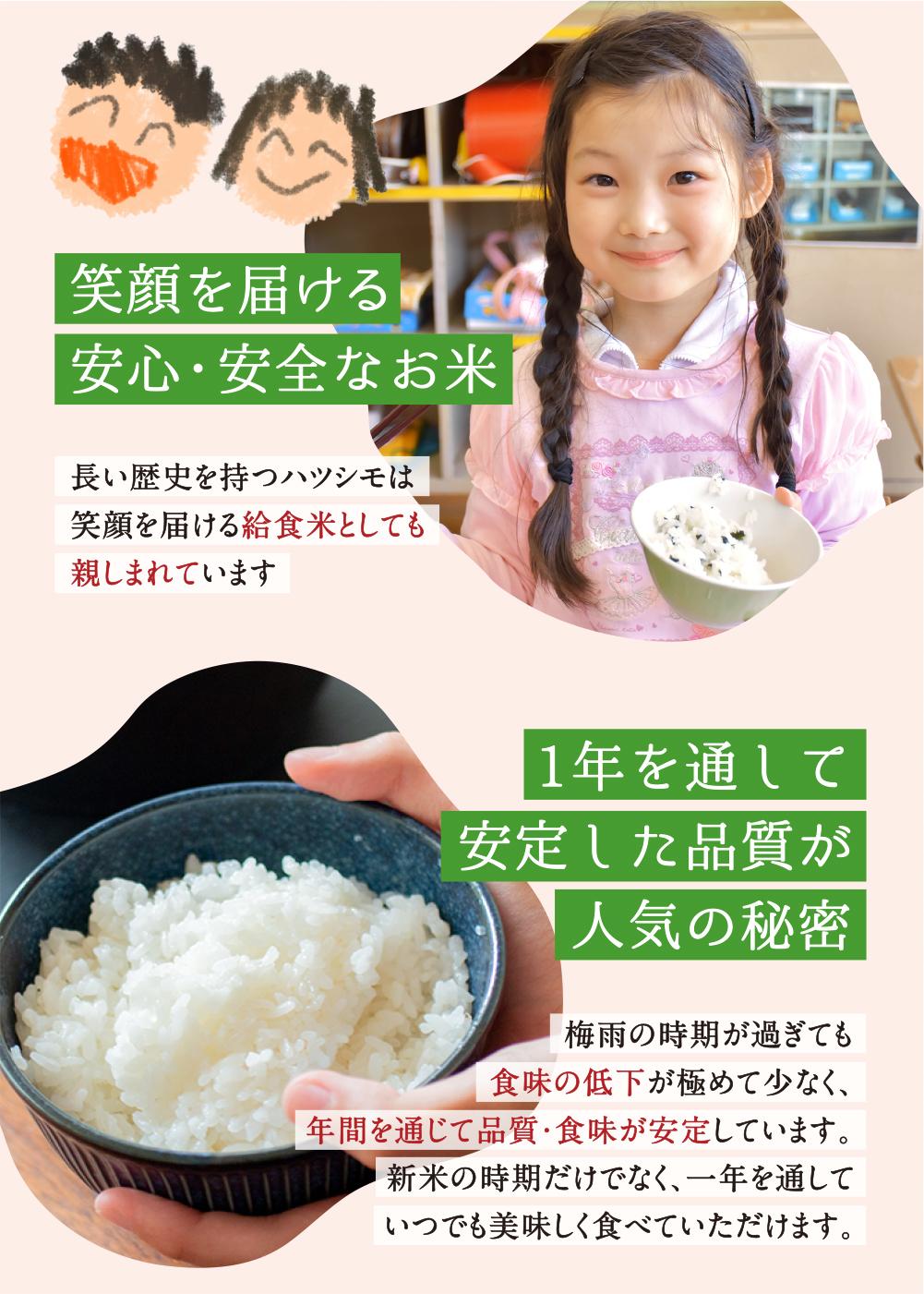 hatushimo